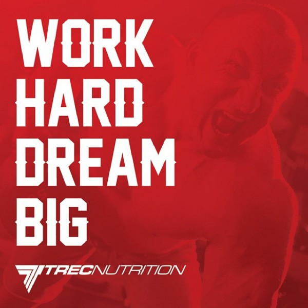 TREC MOTIVATOR: Motivation for Training